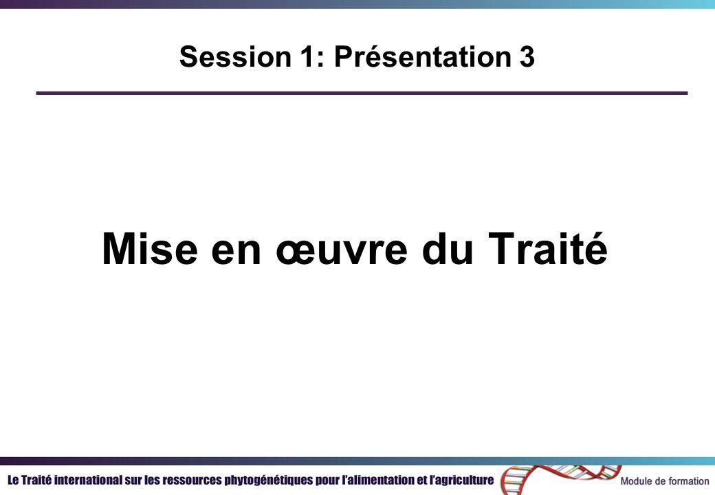Mise en œuvre du Traité Session 1: Présentation 3