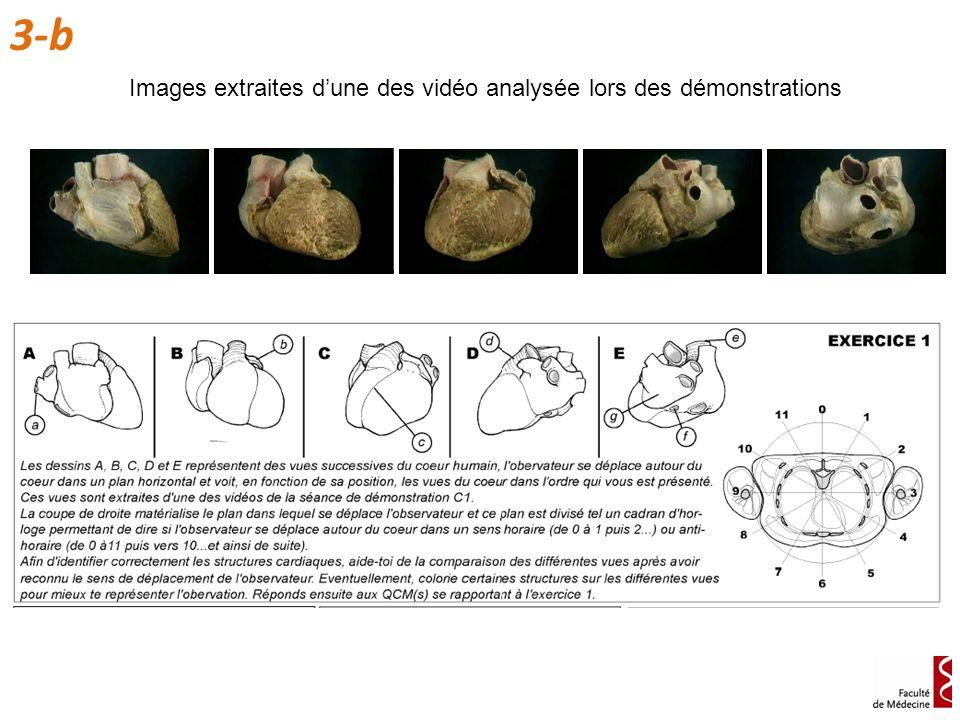 Images extraites dune des vidéo analysée lors des démonstrations