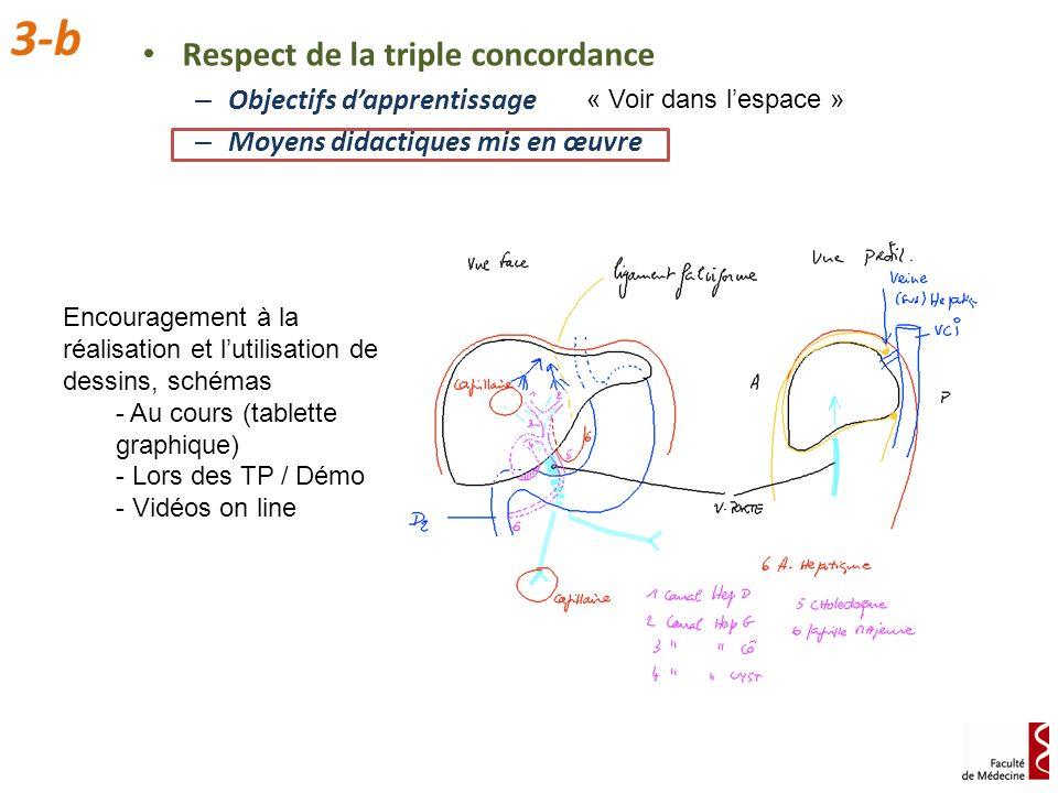 Respect de la triple concordance – Objectifs dapprentissage – Moyens didactiques mis en œuvre 3-b « Voir dans lespace » Encouragement à la réalisation