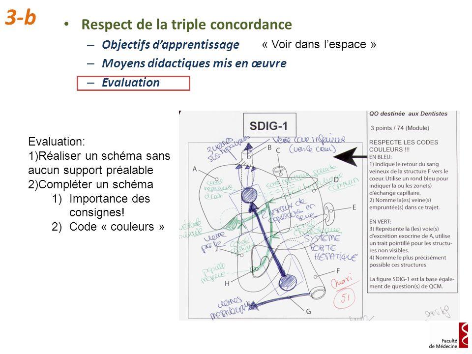 Respect de la triple concordance – Objectifs dapprentissage – Moyens didactiques mis en œuvre – Evaluation 3-b « Voir dans lespace » Evaluation: 1)Réa