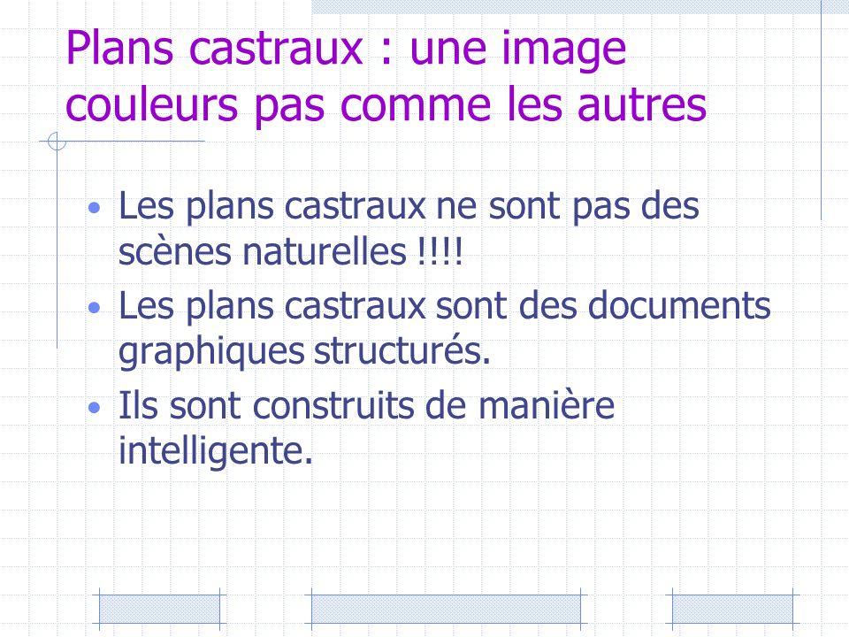 Plans castraux : une image couleurs pas comme les autres Les plans castraux ne sont pas des scènes naturelles !!!! Les plans castraux sont des documen