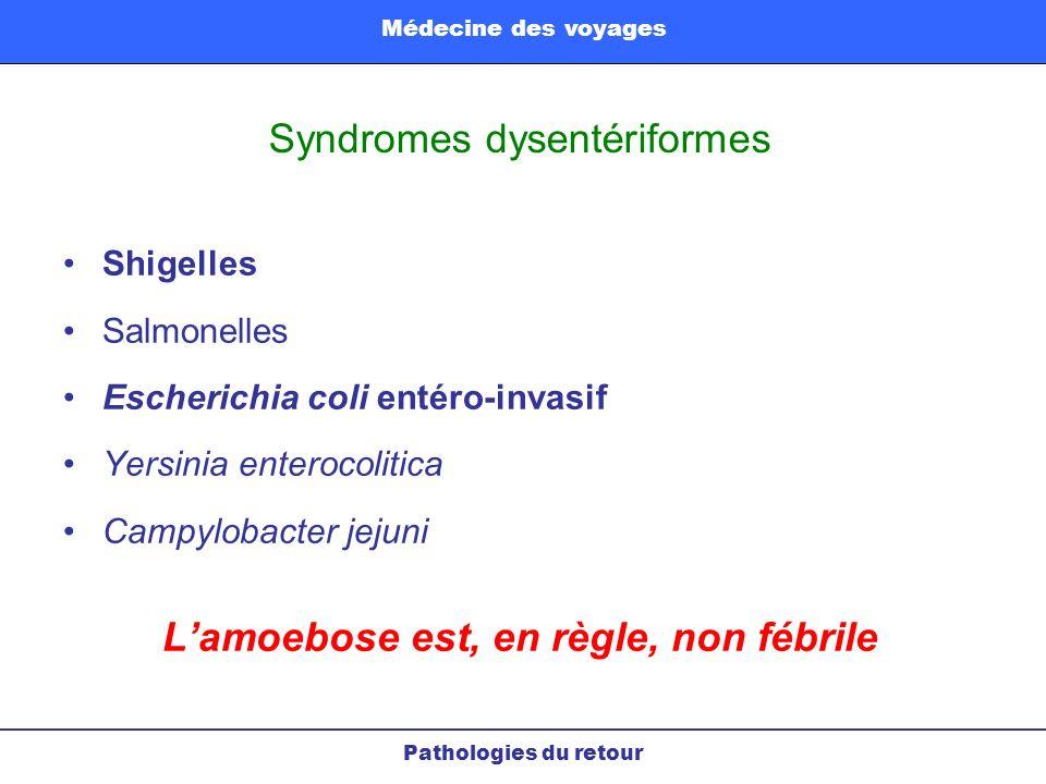 Syndromes dysentériformes Shigelles Salmonelles Escherichia coli entéro-invasif Yersinia enterocolitica Campylobacter jejuni Lamoebose est, en règle,