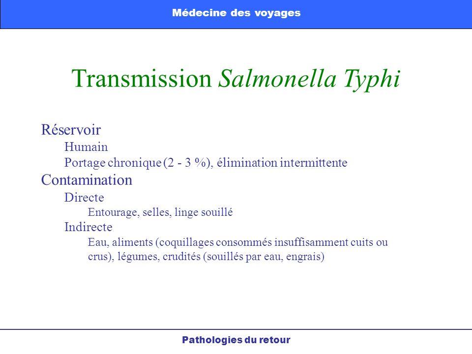 Transmission Salmonella Typhi Réservoir Humain Portage chronique (2 - 3 %), élimination intermittente Contamination Directe Entourage, selles, linge s