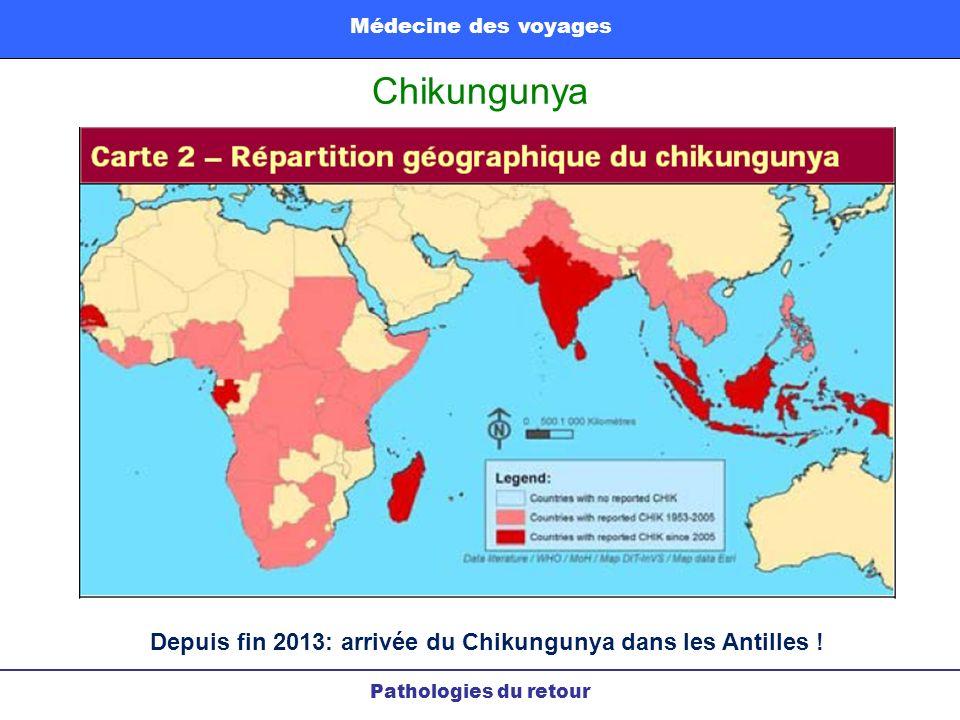 Chikungunya Pathologies du retour Médecine des voyages Depuis fin 2013: arrivée du Chikungunya dans les Antilles !
