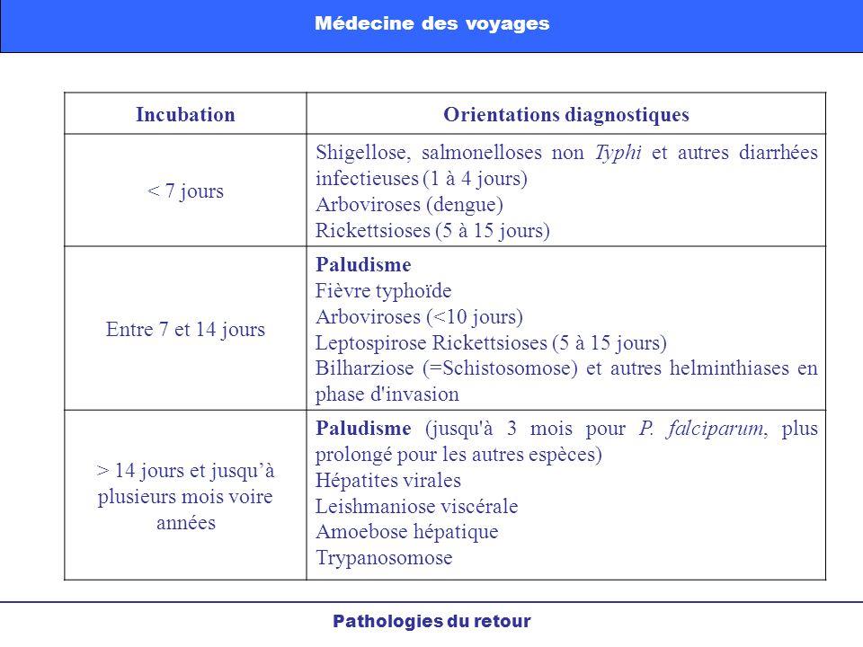 Pathologies du retour Médecine des voyages IncubationOrientations diagnostiques < 7 jours Shigellose, salmonelloses non Typhi et autres diarrhées infe