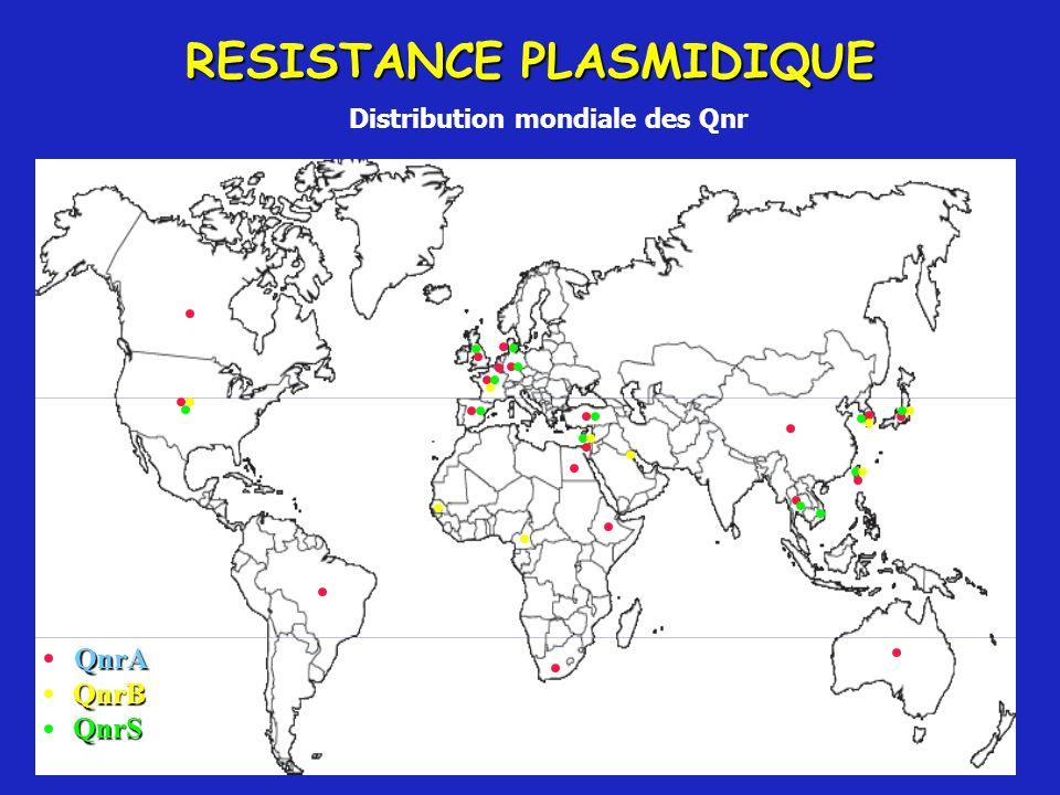 RESISTANCE PLASMIDIQUE Distribution mondiale des Qnr QnrA QnrB QnrS