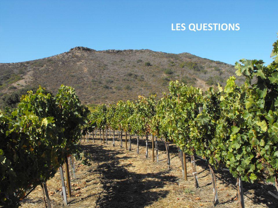 Questions : 1 : Comment sappuyer sur la notoriété dun vin pour faire découvrir un territoire .