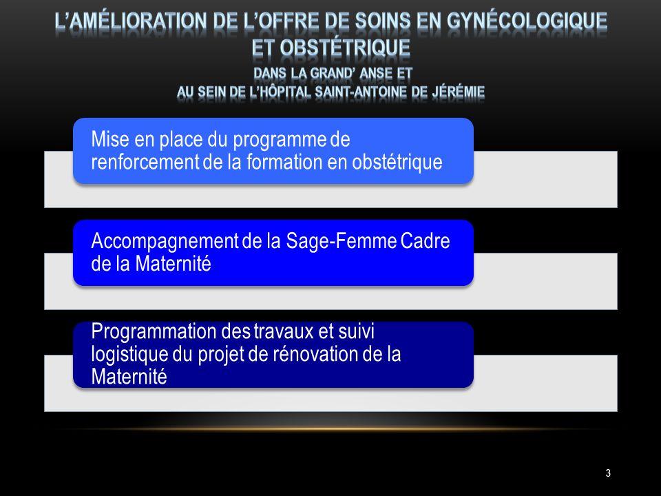 Mise en place du programme de renforcement de la formation en obstétrique Accompagnement de la Sage-Femme Cadre de la Maternité Programmation des travaux et suivi logistique du projet de rénovation de la Maternité 3