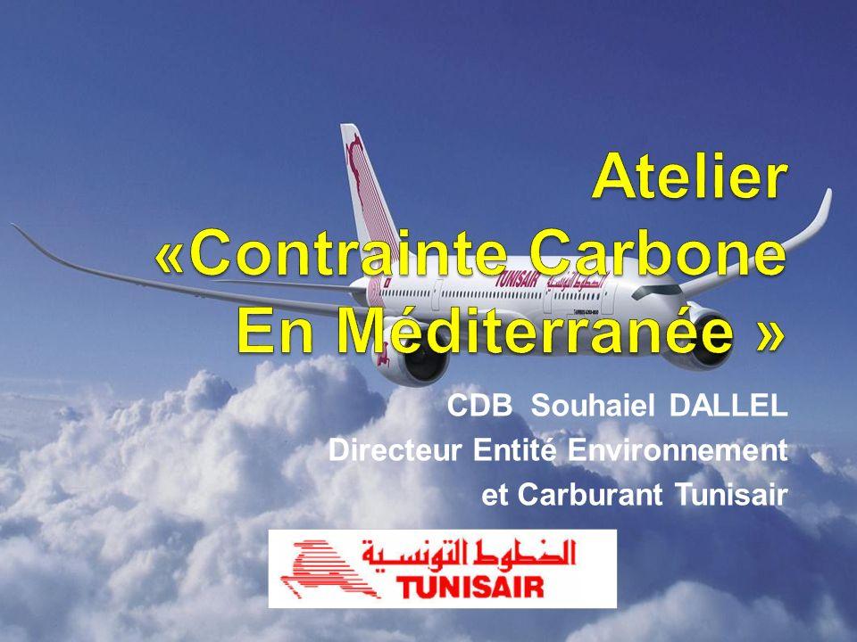 CDB Souhaiel DALLEL Directeur Entité Environnement et Carburant Tunisair