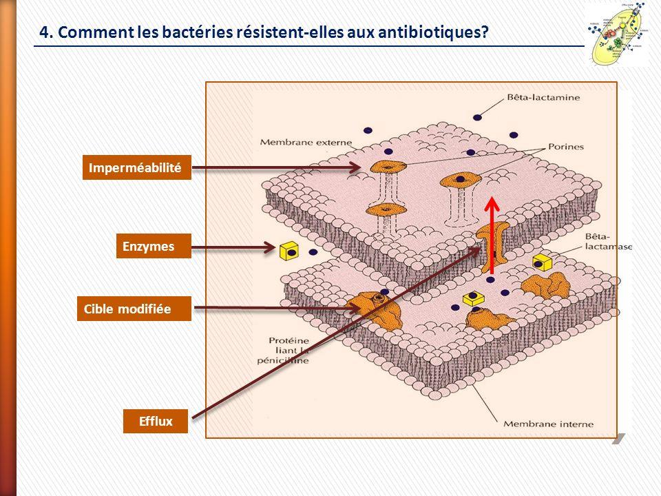 4. Comment les bactéries résistent-elles aux antibiotiques? Imperméabilité Enzymes Cible modifiée Efflux