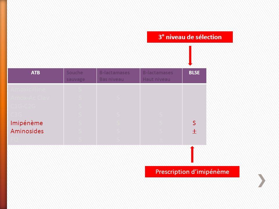 ATBSouche sauvage Β-lactamases Bas niveau Β-lactamases Haut niveau BLSE Amoxicilline Amox-Ac Clav C1G-C2G C3G Imipénème Aminosides FQ SSSSSSSSSSSSSS S