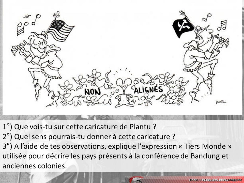 1°) Que vois-tu sur cette caricature de Plantu .