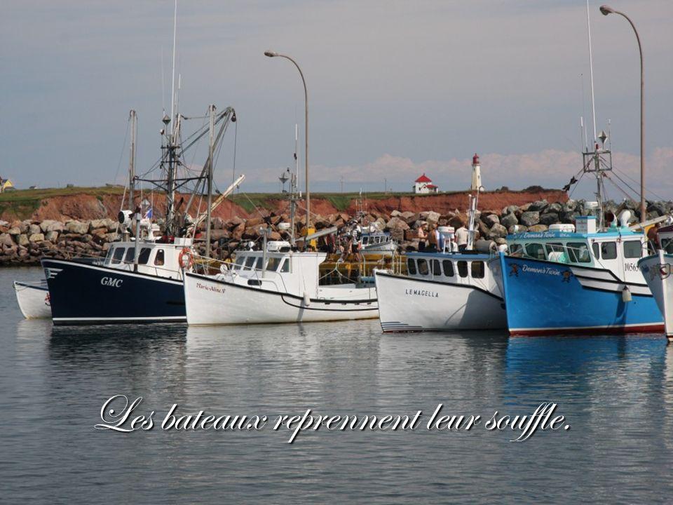 LÎle du Havre Aubert, celle dont on rêve.