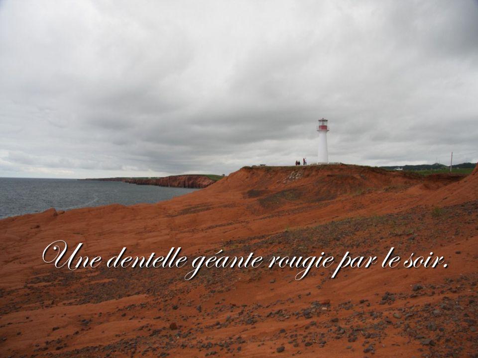 On voudrait bien faire avec eux le tour des Îles.