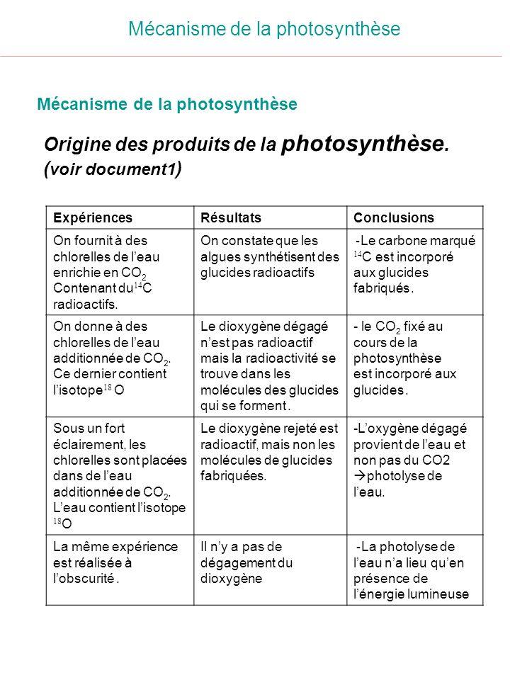 Origine des produits de la photosynthèse. ( voir document1 ) Mécanisme de la photosynthèse ConclusionsRésultatsExpériences - Le carbone marqué 14 C es