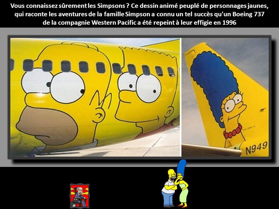 Vous connaissez sûrement les Simpsons .