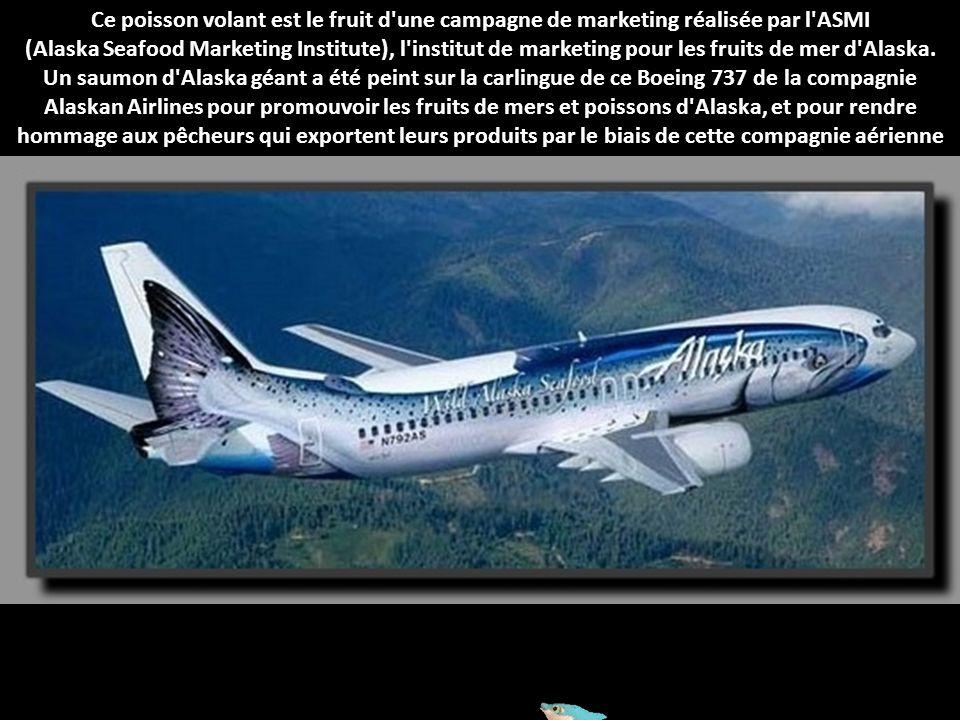 Adam et Eve vous emmènent au paradis à bord de ce Boeing 737 de la compagnie Sky Airlines qui leur a été dédié. L'idéal pour les jeunes couples
