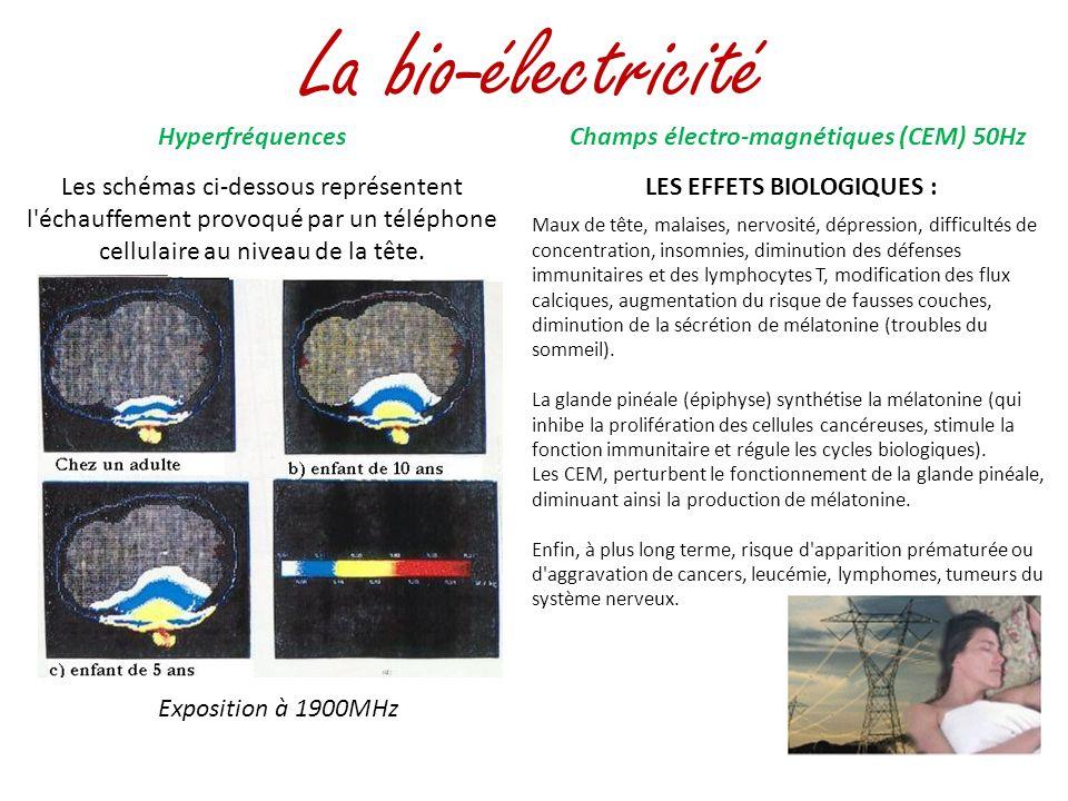 La bio-électricité Exposition à 1900MHz Hyperfréquences Les schémas ci-dessous représentent l'échauffement provoqué par un téléphone cellulaire au niv