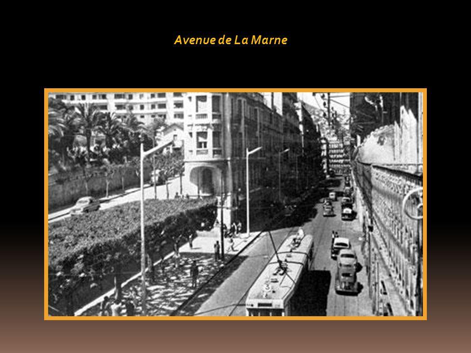 Avenue Bouzarhea
