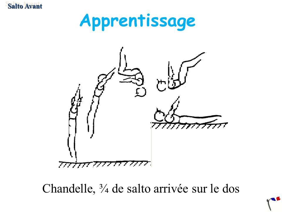 Apprentissage Chandelle, ¾ de salto arrivée sur le dos Salto Avant