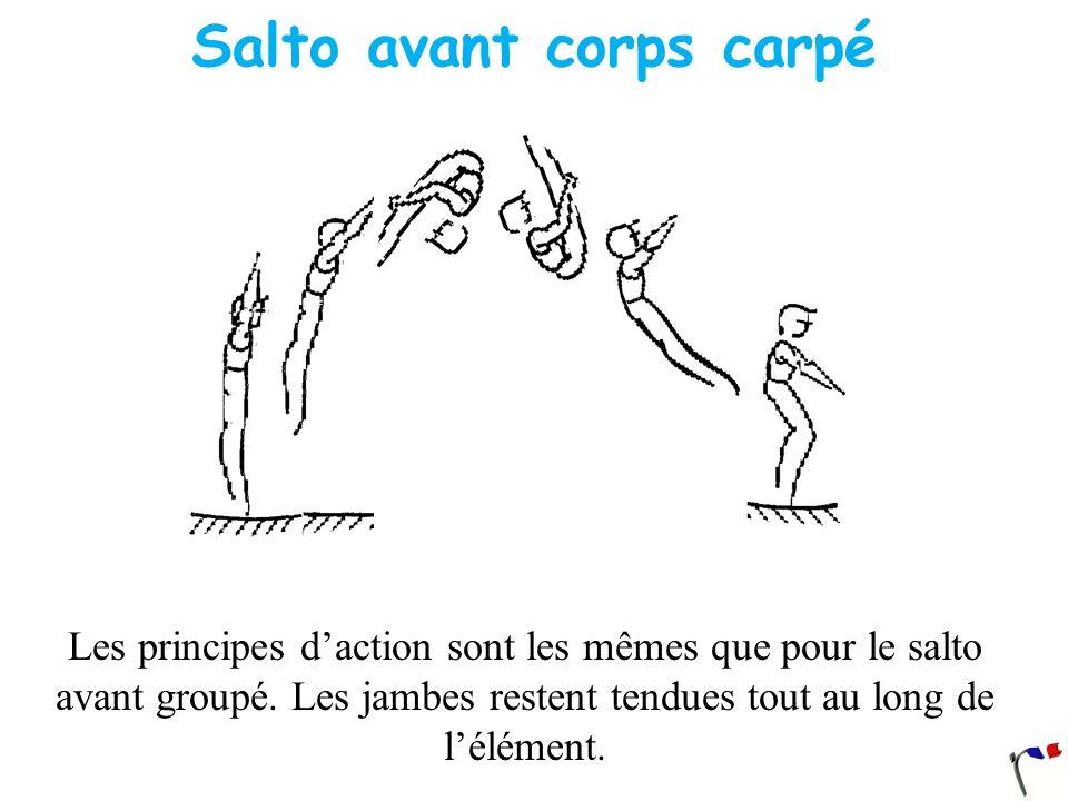 Salto avant corps carpé Les principes daction sont les mêmes que pour le salto avant groupé. Les jambes restent tendues tout au long de lélément.