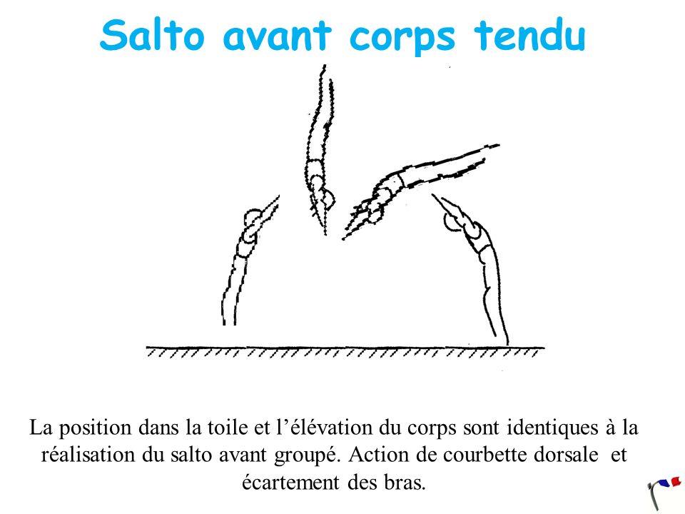Salto avant corps tendu La position dans la toile et lélévation du corps sont identiques à la réalisation du salto avant groupé. Action de courbette d
