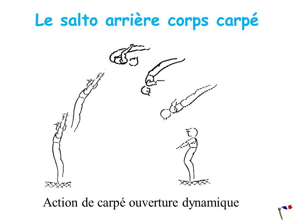 Le salto arrière corps carpé Action de carpé ouverture dynamique