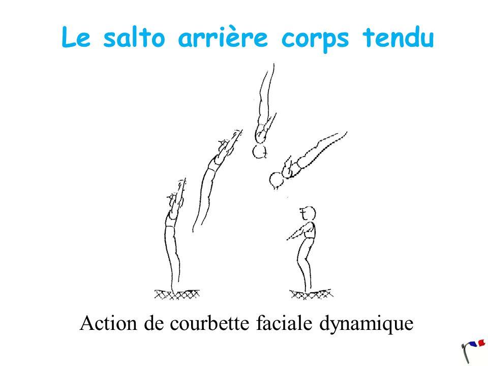 Le salto arrière corps tendu Action de courbette faciale dynamique
