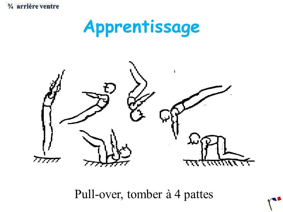 Pull-over, tomber à 4 pattes ¾ arrière ventre Apprentissage