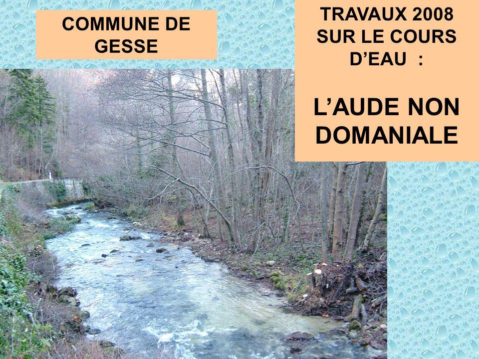 TRAVAUX 2008 SUR LE COURS DEAU : LAUDE NON DOMANIALE COMMUNE DE GESSE