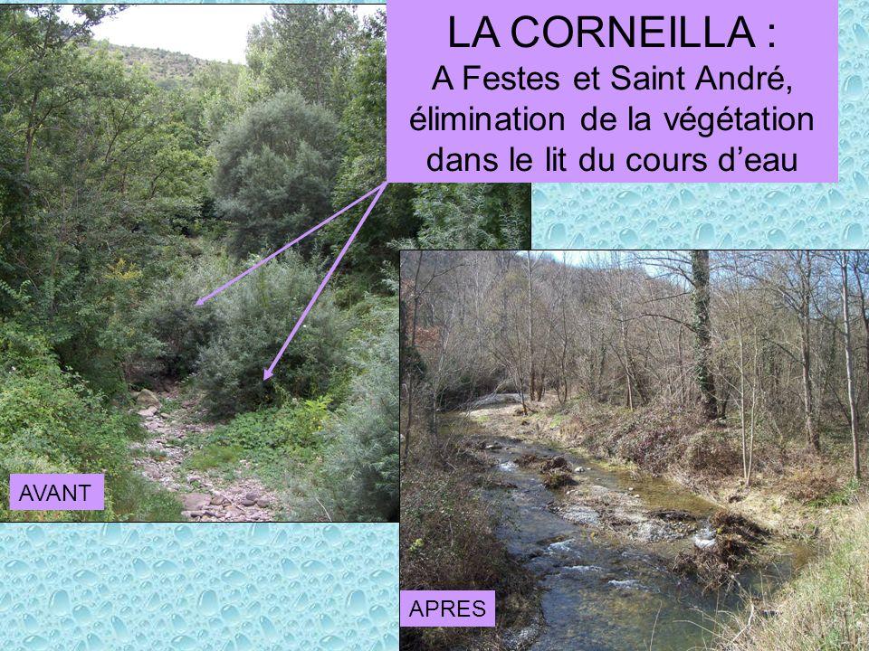 LA CORNEILLA : A Festes et Saint André, élimination de la végétation dans le lit du cours deau AVANT APRES