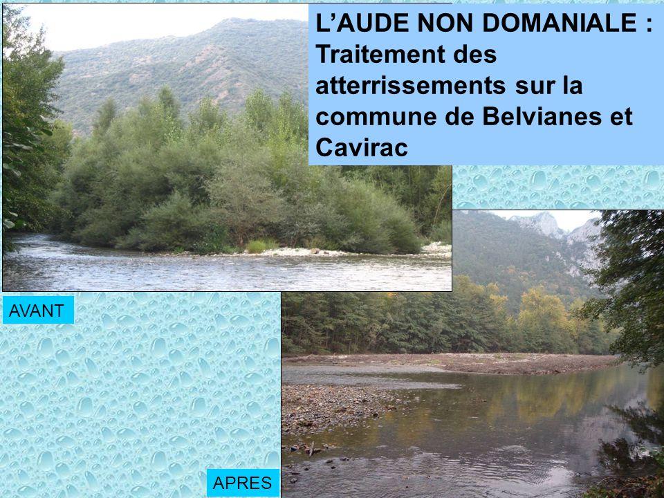 LAUDE NON DOMANIALE : Traitement des atterrissements sur la commune de Belvianes et Cavirac AVANT APRES