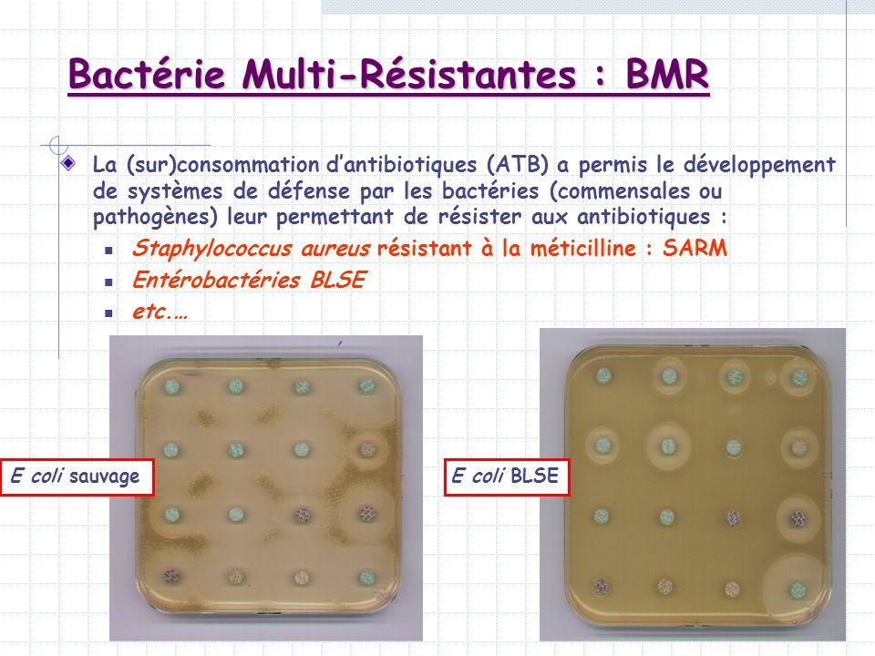 Bactérie Multi-Résistantes : BMR La (sur)consommation dantibiotiques (ATB) a permis le développement de systèmes de défense par les bactéries (commens