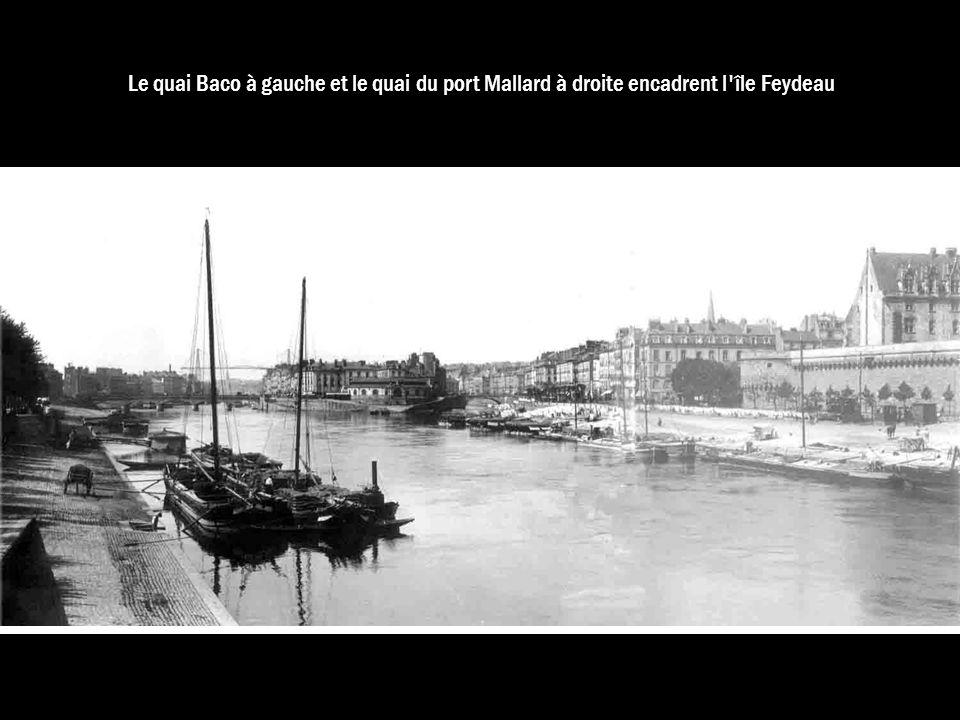 Le quai Baco à gauche et le quai du port Mallard à droite encadrent l'île Feydeau