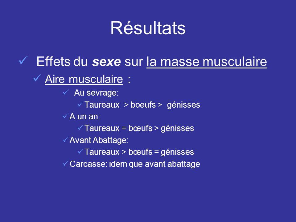 Résultats Effets du sexe sur la masse musculaire Aire musculaire : Au sevrage: Taureaux > boeufs > génisses A un an: Taureaux = bœufs > génisses Avant