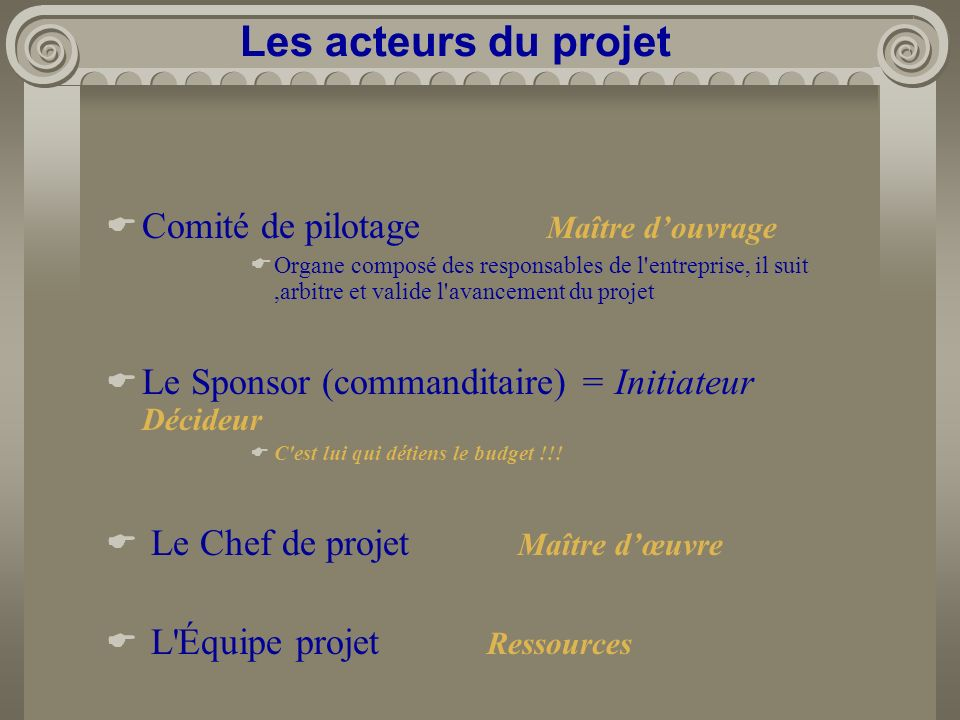 Comité de pilotage Maître douvrage Organe composé des responsables de l'entreprise, il suit,arbitre et valide l'avancement du projet Le Sponsor (comma