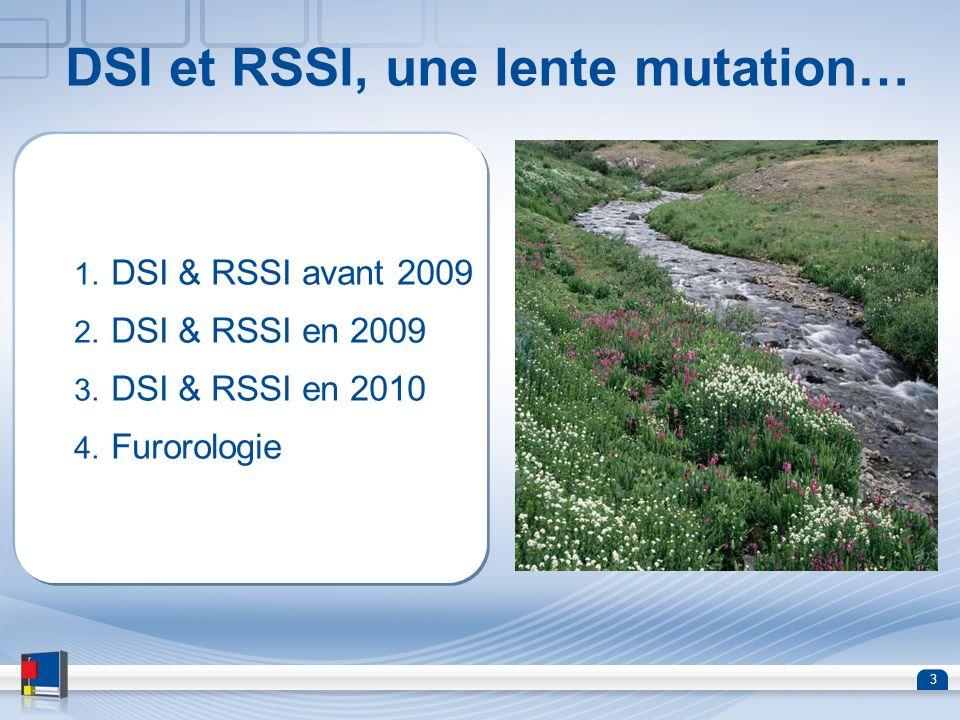 3 DSI et RSSI, une lente mutation… 1. DSI & RSSI avant 2009 2. DSI & RSSI en 2009 3. DSI & RSSI en 2010 4. Furorologie