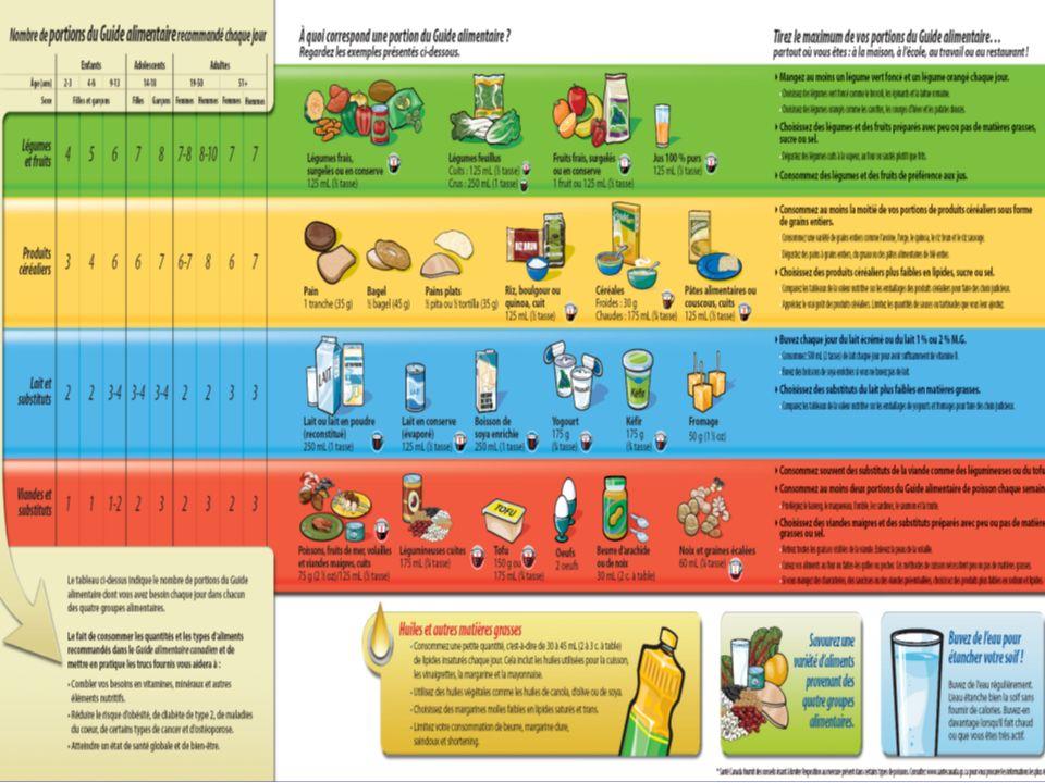 Anne-Florence Paris Diététiste 418-624-4867 afparis@hotmail.com Alimentation avant un entraînement ou compétition n L HYDRATATION: -boire beaucoup tous les jours -boire ½ à 1 litre de liquide durant les 2-3 heures prédédant l exercice