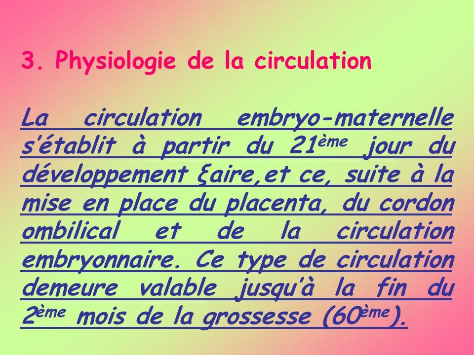 3. Physiologie de la circulation La circulation embryo-maternelle sétablit à partir du 21 ème jour du développement ξaire,et ce, suite à la mise en pl