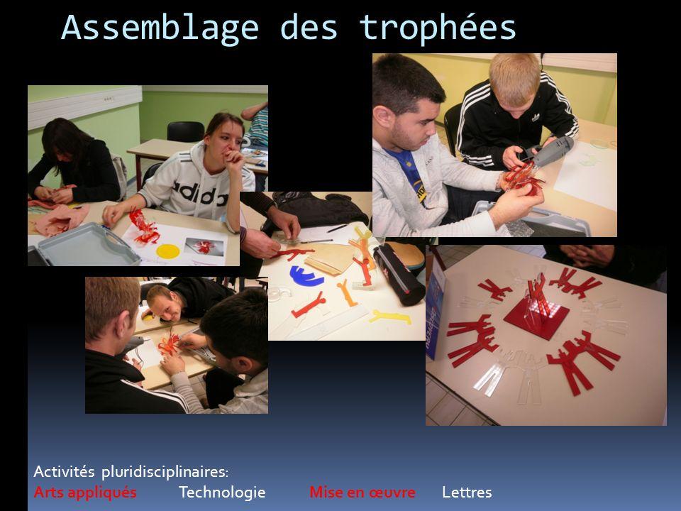 Assemblage des trophées Activités pluridisciplinaires: Arts appliqués Technologie Mise en œuvre Lettres