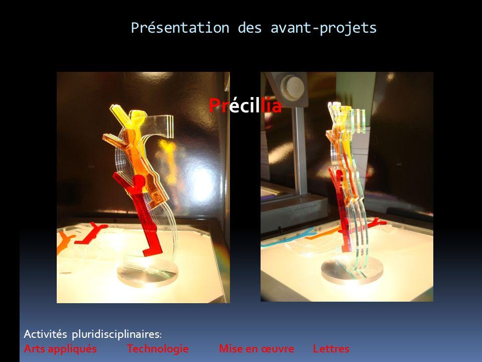 Activités pluridisciplinaires: Arts appliqués Technologie Mise en œuvre Lettres Précillia Présentation des avant-projets