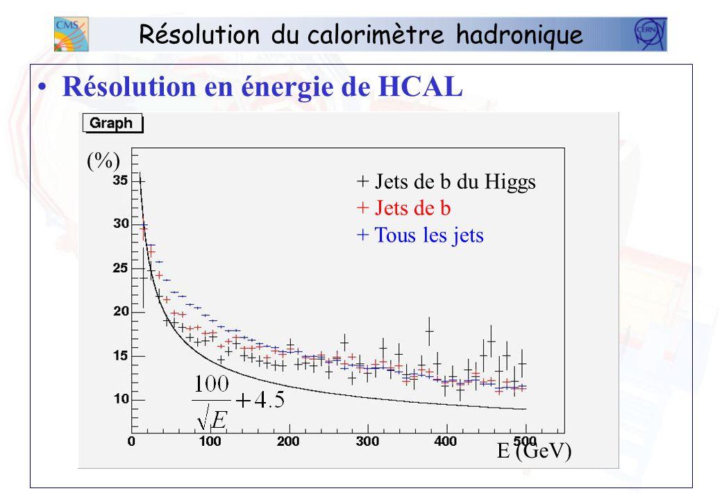 Résolution du calorimètre hadronique Résolution en énergie de HCAL E (GeV) (%) + Jets de b du Higgs + Jets de b + Tous les jets