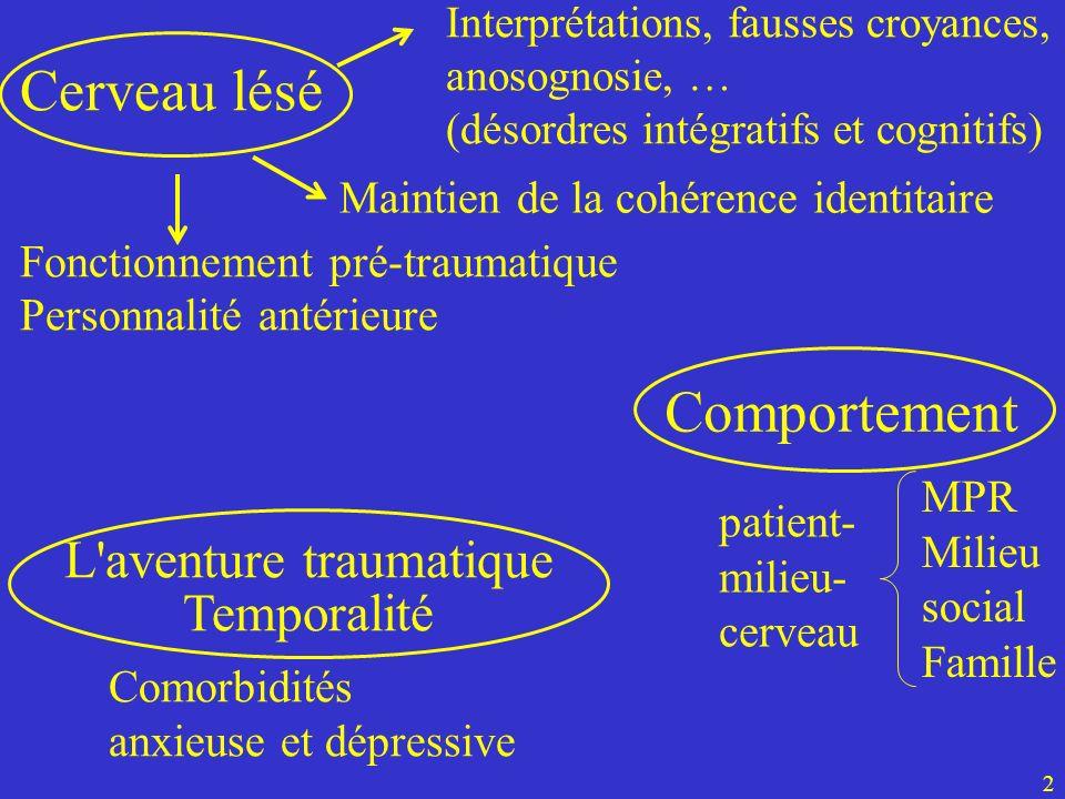 patient- milieu- cerveau MPR Milieu social Famille Cerveau lésé L'aventure traumatique Temporalité 2 Interprétations, fausses croyances, anosognosie,