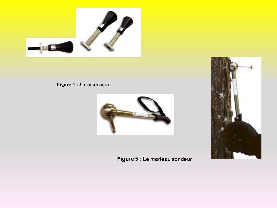 Figure 5 : Le marteau sondeur.