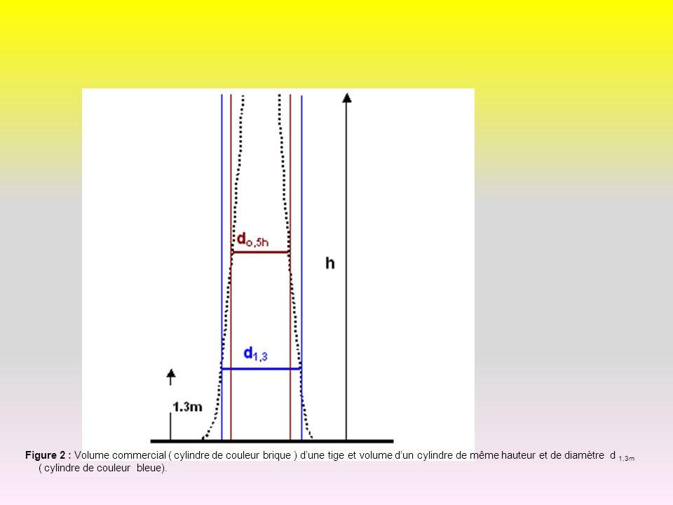 Figure 2 : Volume commercial ( cylindre de couleur brique ) dune tige et volume dun cylindre de même hauteur et de diamètre d 1,3m ( cylindre de coule