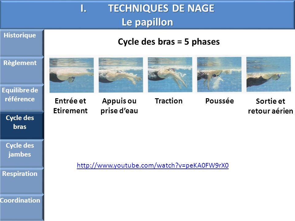 I.TECHNIQUES DE NAGE Le papillon Historique Règlement Equilibre de référence Cycle des bras Cycle des jambes Respiration Coordination Cycle des bras =