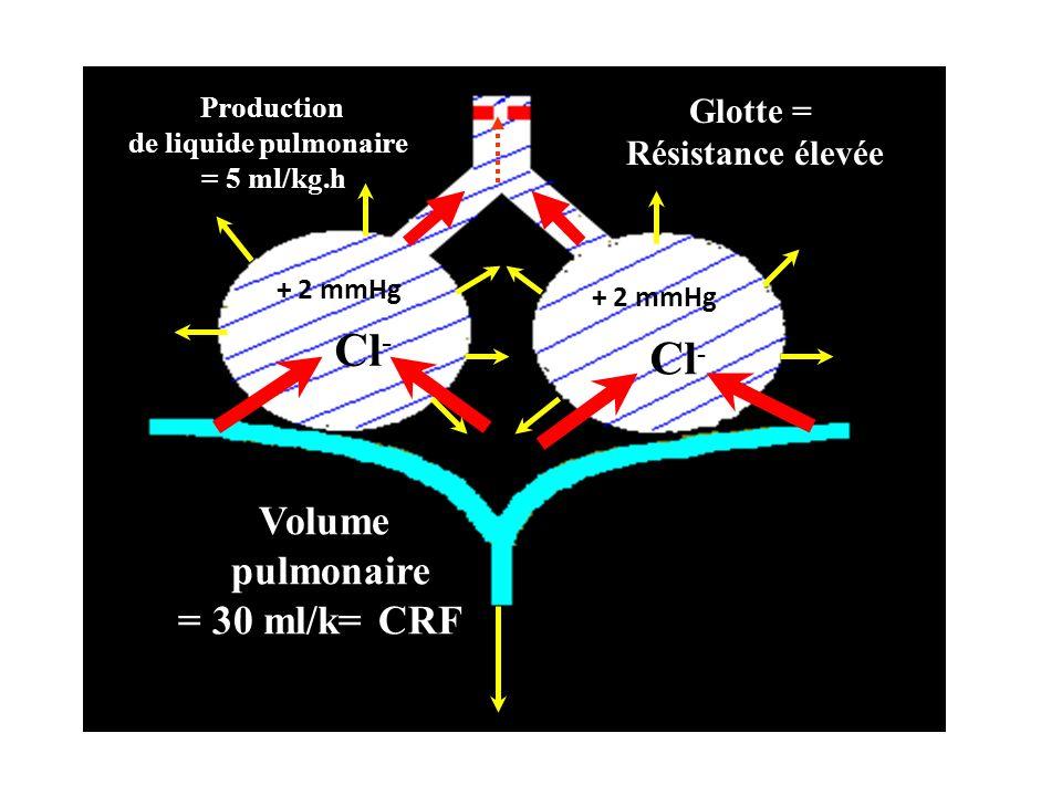 Volume pulmonaire = 30 ml/k= CRFg Production de liquide pulmonaire = 5 ml/kg.h Cl - Glotte = Résistance élevée + 2 mmHg