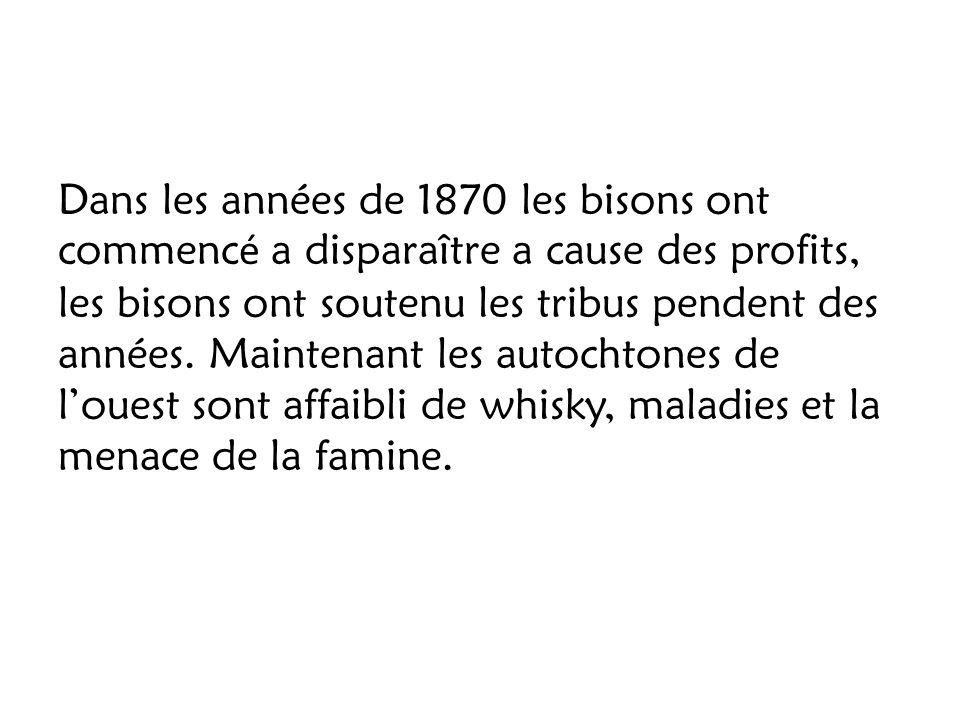 Dans les années de 1870 les bisons ont commenc é a disparaître a cause des profits, les bisons ont soutenu les tribus pendent des années. Maintenant l