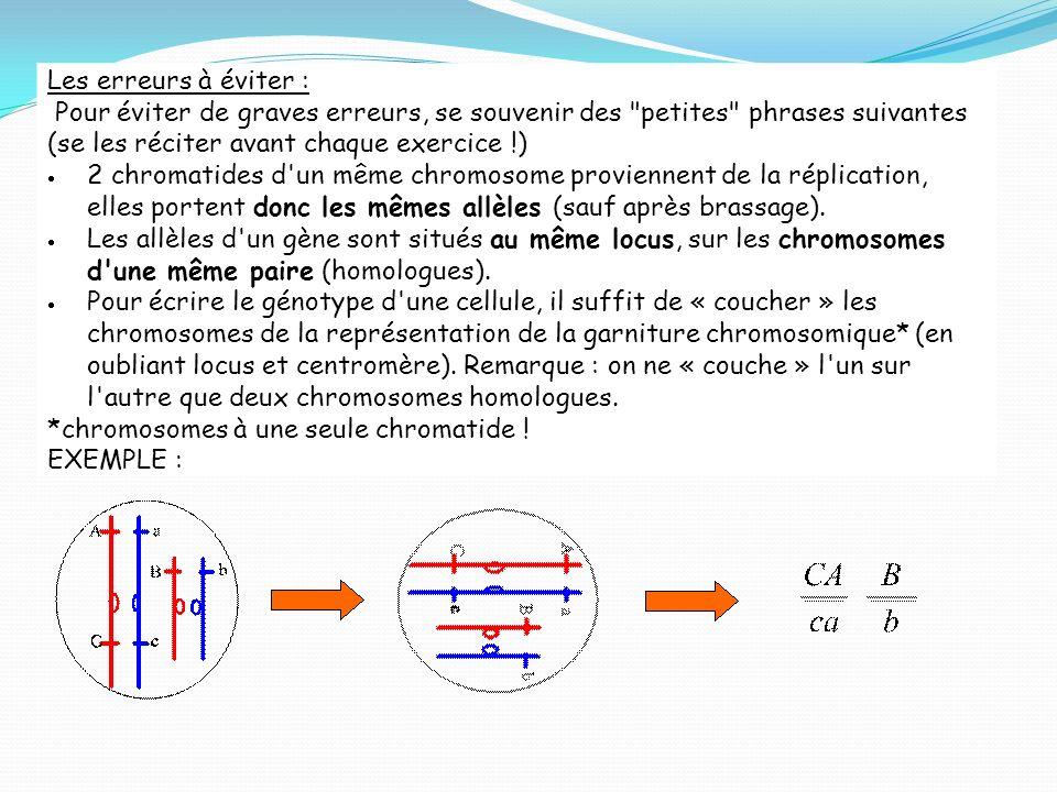 Exercice 2 : Diploïde ou haploïde .1. Ecrire les génotypes des cellules suivantes.
