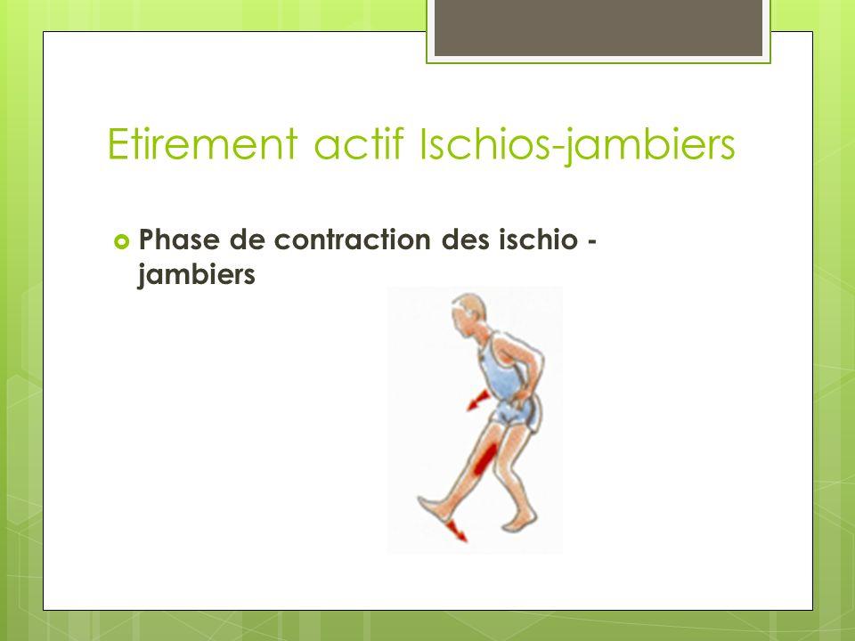 Etirement actif Ischios-jambiers Phase de contraction des ischio - jambiers